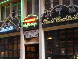 Coffeeshop Freeland in Amsterdam