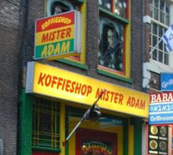 Coffeeshop Mister Adam in Amsterdam