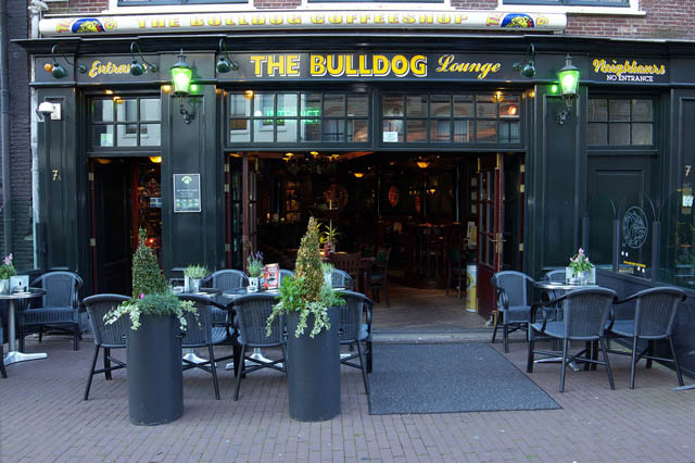 Coffeshop The Bulldog Lounge in Amsterdam