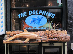 Coffeeshop The Dolphin's in Amsterdam in the Netherlands